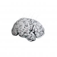 Sin título-1_cerebro