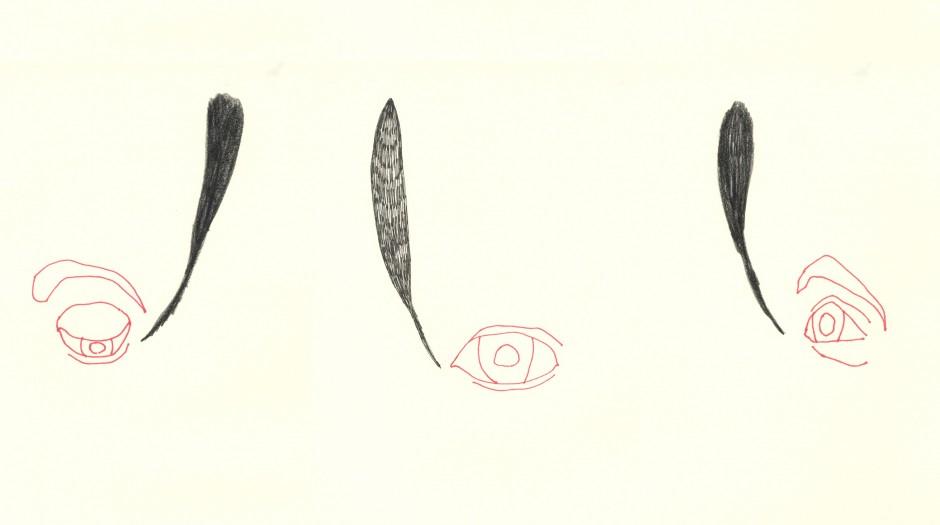Home-Ojos